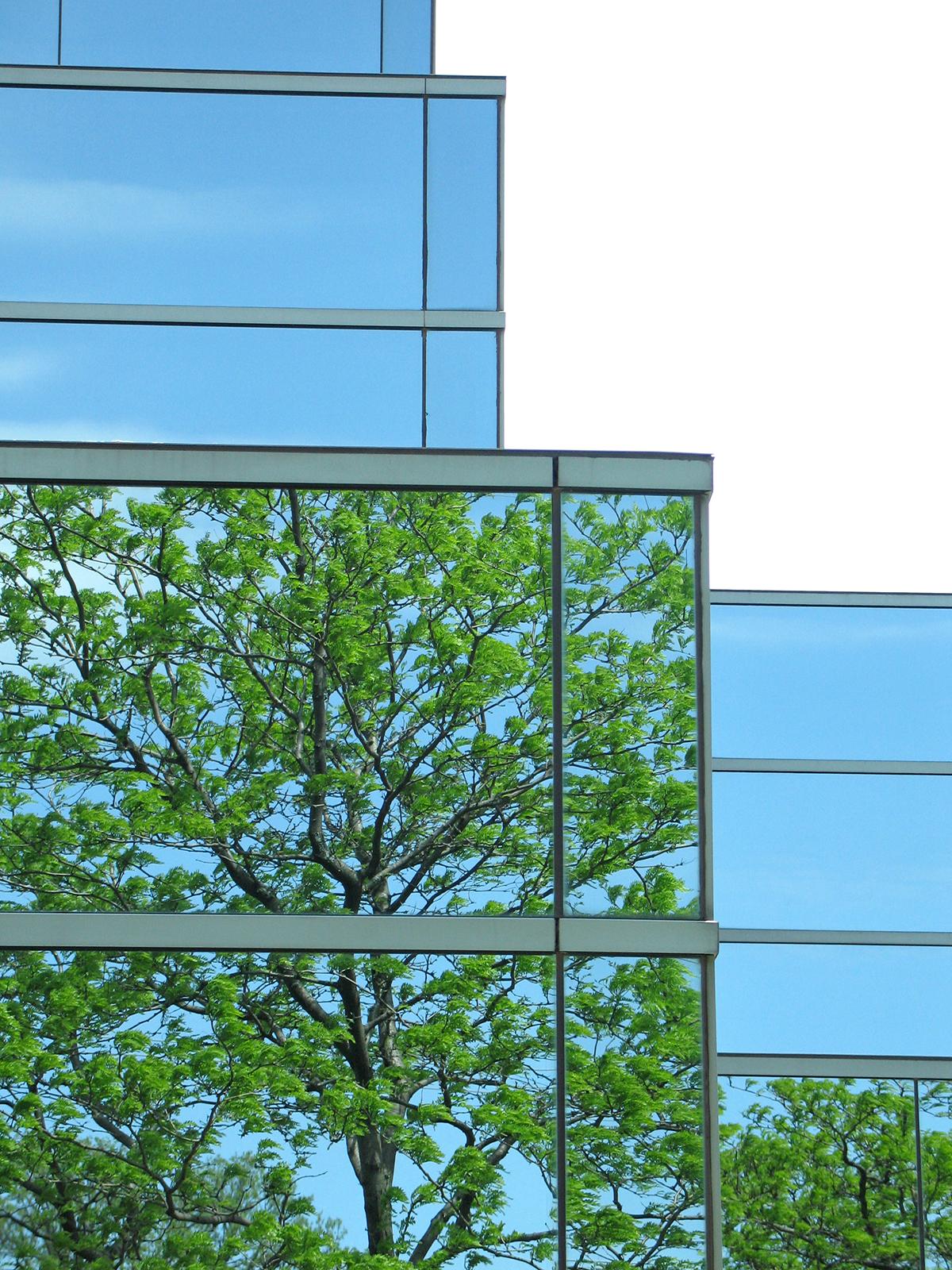 Net Zero Água: Curitiba tem o primeiro prédio corporativo autossuficiente